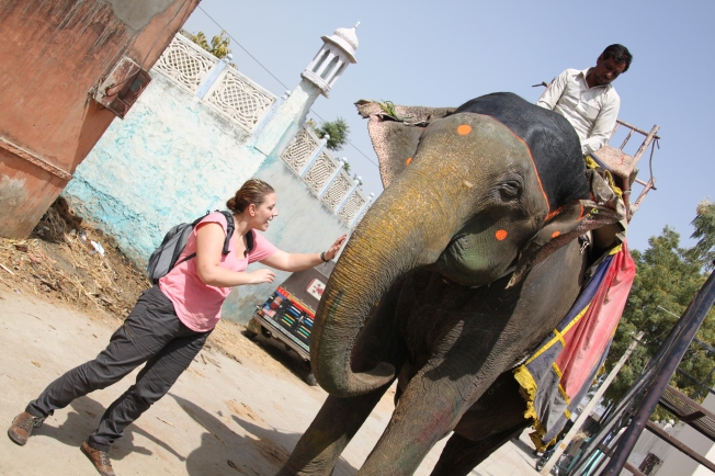 Rosa acaricia al elefante sin perderle de vista ni un momento.